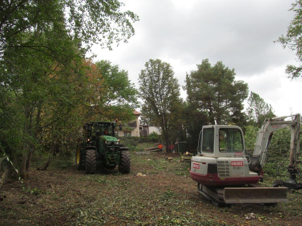 Grünpflege Baumschnitt Heckenschnitt Grüngut Bagger